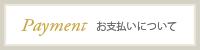 originalsite_banner_payment